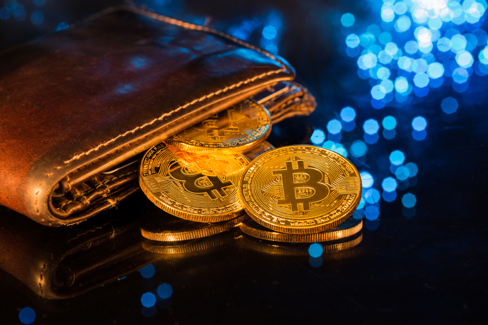 Bitcoin Cryptocurrency Peter Schiff